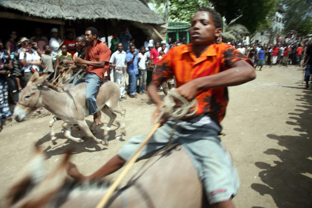 Riders-on-their-donkeys-during-the-annual-race-which-takes-place-during Maulidi Lamu Kenya