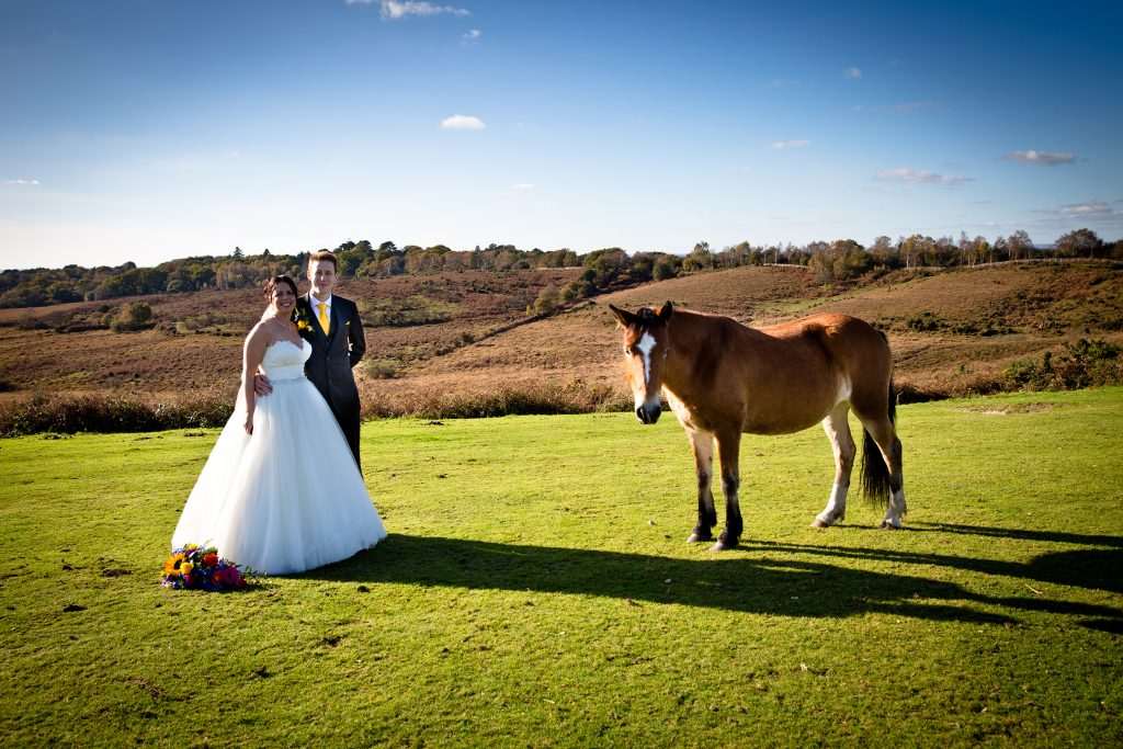 Bride & Groom in the New Forest
