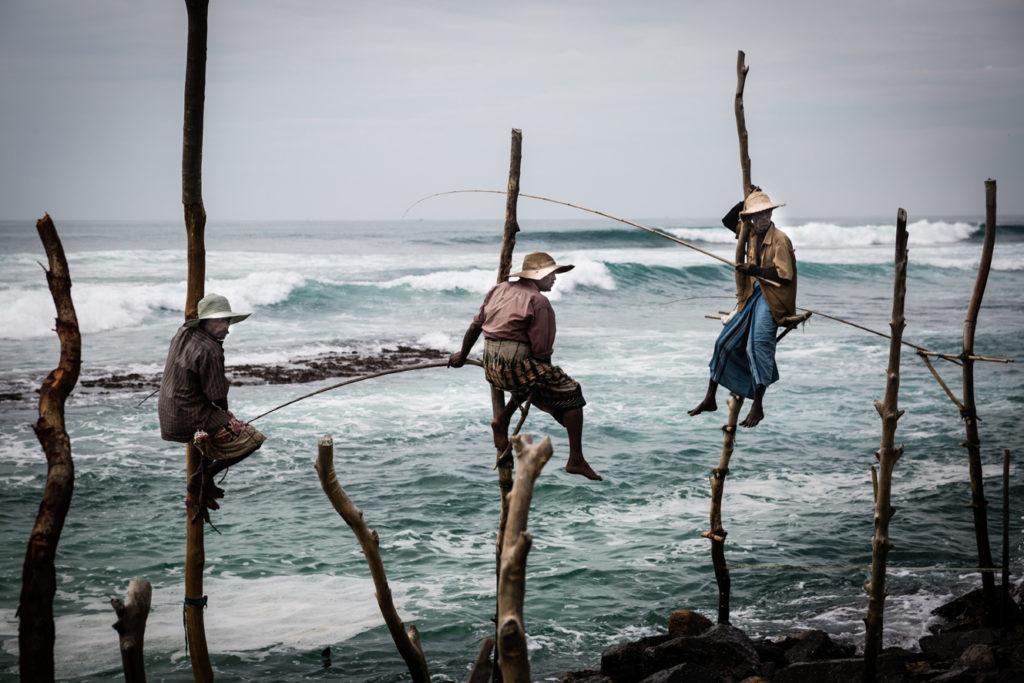 Stilt fisherman Sri Lanka