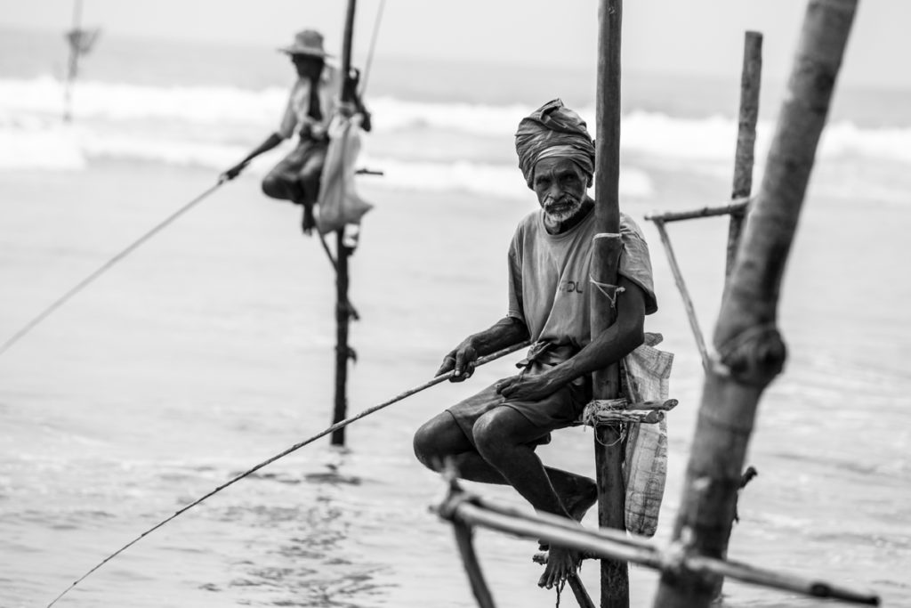 Stilt Fisherman Sri Lanka